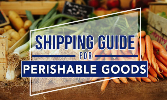 Keeping it Fresh: Shipping Guide for Perishable Goods